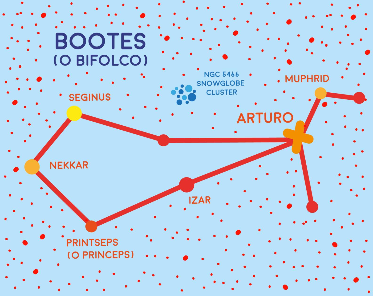 Costellazione del Bootes o BIfolco